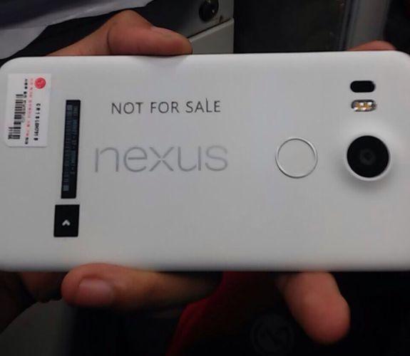 nexus 5 wild